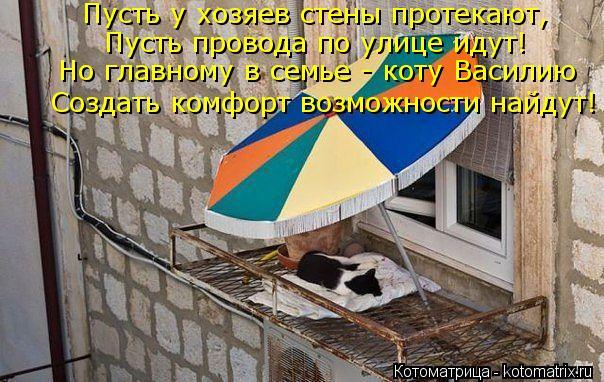 Котоматрица: Пусть у хозяев стены протекают, Пусть провода по улице идут! Но главному в семье - коту Василию Создать комфорт возможности найдут!