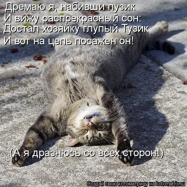 http://kotomatrix.ru/images/lolz/2013/06/21/kotomatritsa_lM.jpg