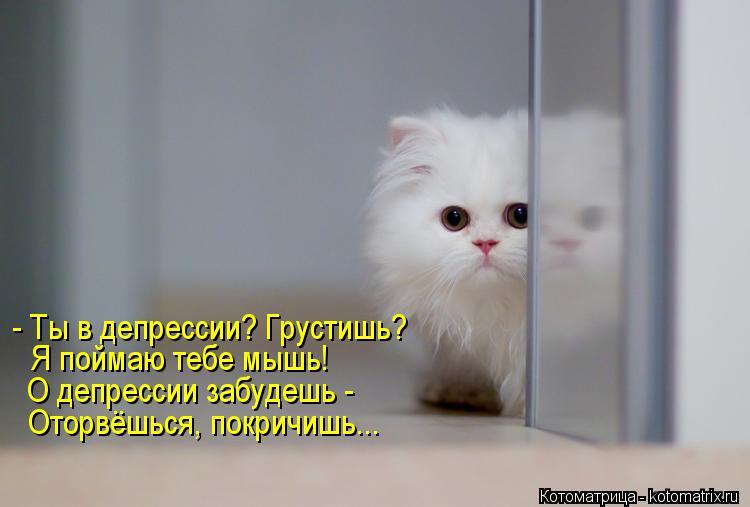 Котоматрица: - Ты в депрессии? Грустишь? Я поймаю тебе мышь! О депрессии забудешь -  Оторвёшься, покричишь...