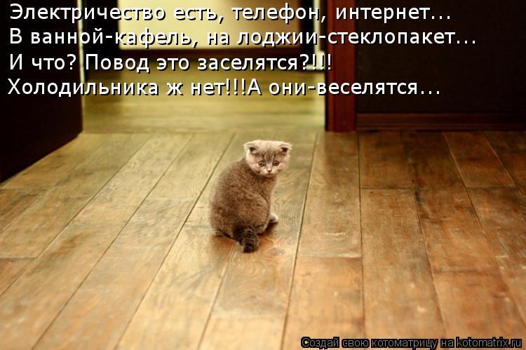 kotomatritsa_hX.jpg