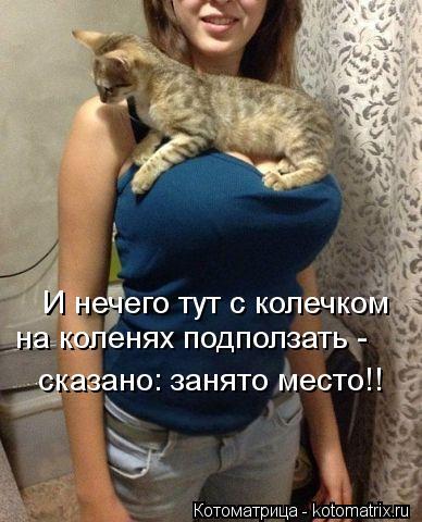 kotomatritsa_5A.jpg
