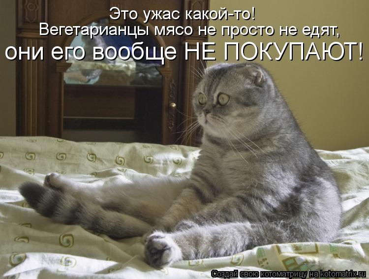 kotomatritsa_sj.jpg
