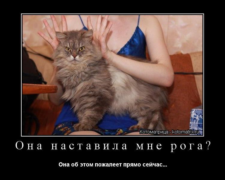 Сердюков наставил рога своей жене 23 фотография