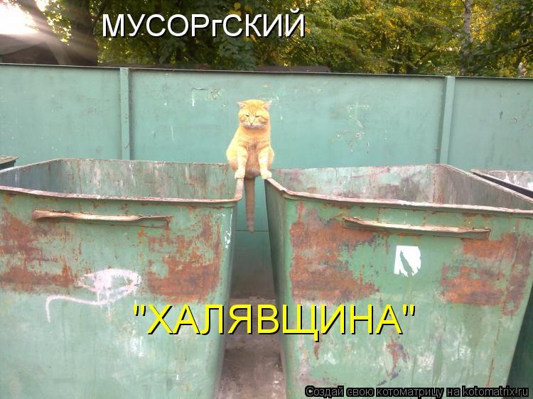 "Котоматрица: МУСОРгСКИЙ ""ХАЛЯВЩИНА"""