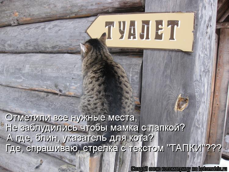 """Котоматрица: Отметили все нужные места, Не заблудились чтобы мамка с папкой? А где, блин, указатель для кота? Где, спрашиваю, стрелка с текстом """"ТАПКИ""""???"""