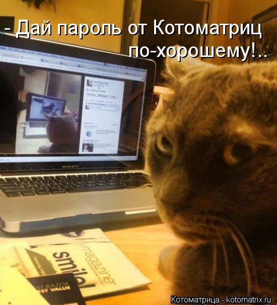 Котоматрица: - Дай пароль от Котоматриц  по-хорошему!..