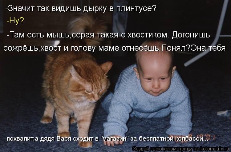 http://kotomatrix.ru/images/lolz/2013/06/29/kotomatritsa_v0.jpg