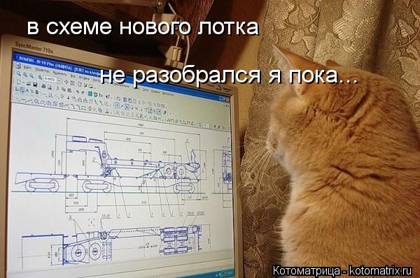 Котоматрица: в схеме нового лотка  не разобрался я пока...