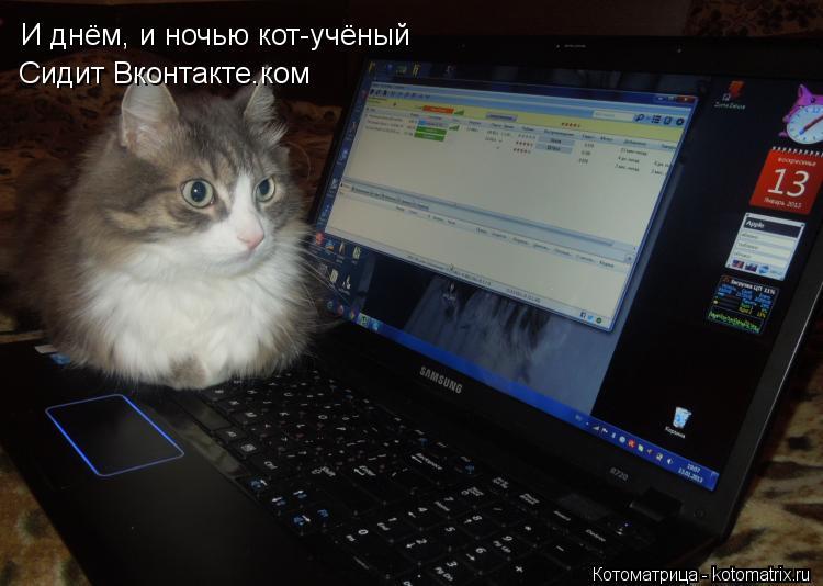 Котоматрица: И днём, и ночью кот-учёный Сидит Вконтакте.ком