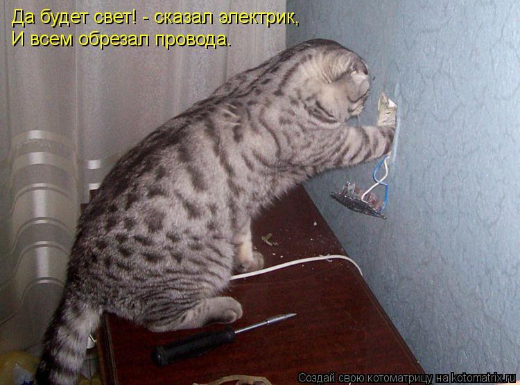 Котоматрица: Да будет свет! - сказал электрик, И всем обрезал провода.