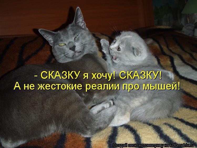 Котоматрица: - СКАЗКУ я хочу! СКАЗКУ! А не жестокие реалии про мышей!
