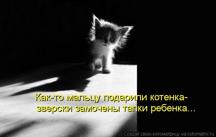 Котоматрица: Как-то мальцу подарили котенка- зверски замочены тапки ребенка...