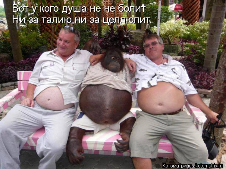 kotomatritsa_BH.jpg