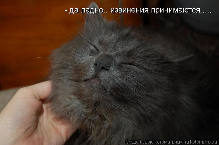 kotomatritsa_Ol.jpg