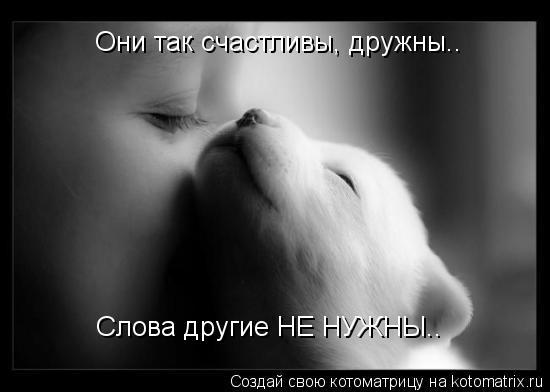 Котоматрица: Они так счастливы, дружны.. Слова другие НЕ НУЖНЫ..