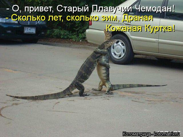 Котоматрица: - О, привет, Старый Плавучий Чемодан! - Сколько лет, сколько зим, Драная Кожаная Куртка!
