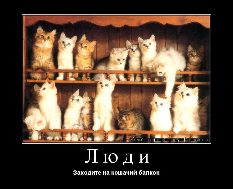 Котоматрица: Люди Заходите на кошачий балкон