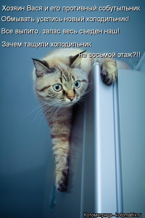 Котоматрица: Хозяин Вася и его противный собутыльник Обмывать уселись новый холодильник! Все выпито, запас весь съеден наш! Зачем тащили холодильник  на