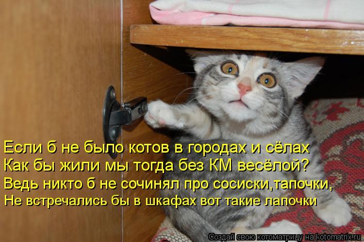 Котоматрица: Если б не было котов в городах и сёлах Как бы жили мы тогда без КМ весёлой? Ведь никто б не сочинял про сосиски,тапочки, Не встречались бы в шк