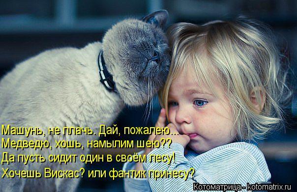 Котоматрица: Машунь, не плачь. Дай, пожалею... Медведю, хошь, намылим шею?? Да пусть сидит один в своём лесу! Хочешь Вискас? или фантик принесу?