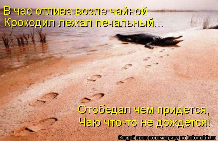Котоматрица: В час отлива возле чайной Крокодил лежал печальный... Отобедал чем придется, Чаю что-то не дождется!