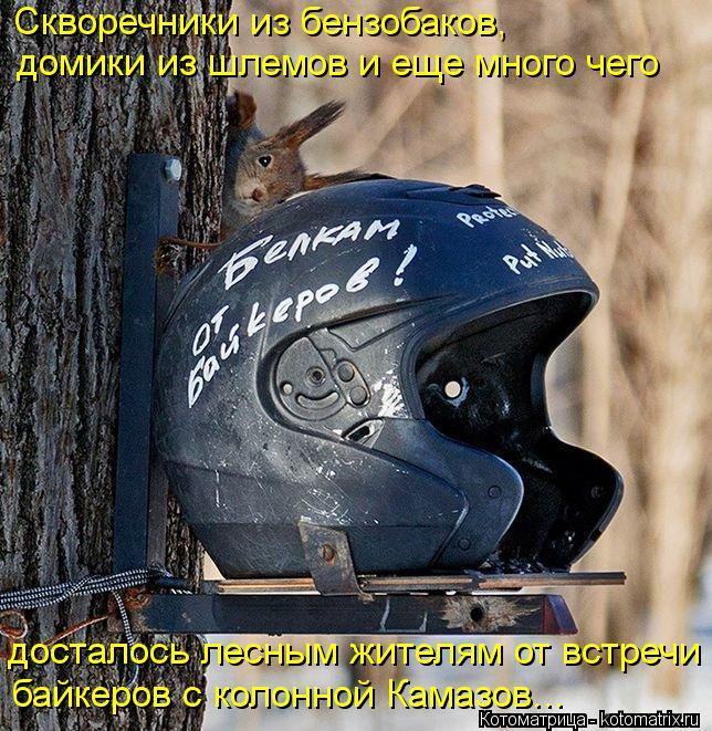 Котоматрица: Скворечники из бензобаков, домики из шлемов и еще много чего досталось лесным жителям от встречи байкеров с колонной Камазов...
