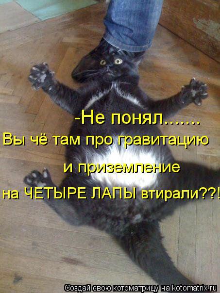 Котоматрица: -Не понял....... Вы чё там про гравитацию и приземление  на ЧЕТЫРЕ ЛАПЫ втирали??!