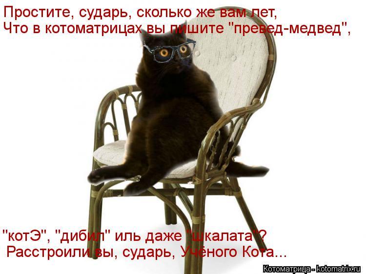 """Котоматрица: Простите, сударь, сколько же вам лет, Что в котоматрицах вы пишите """"превед-медвед"""", """"котЭ"""", """"дибил"""" иль даже """"шкалата""""? Расстроили вы, сударь, Учё"""