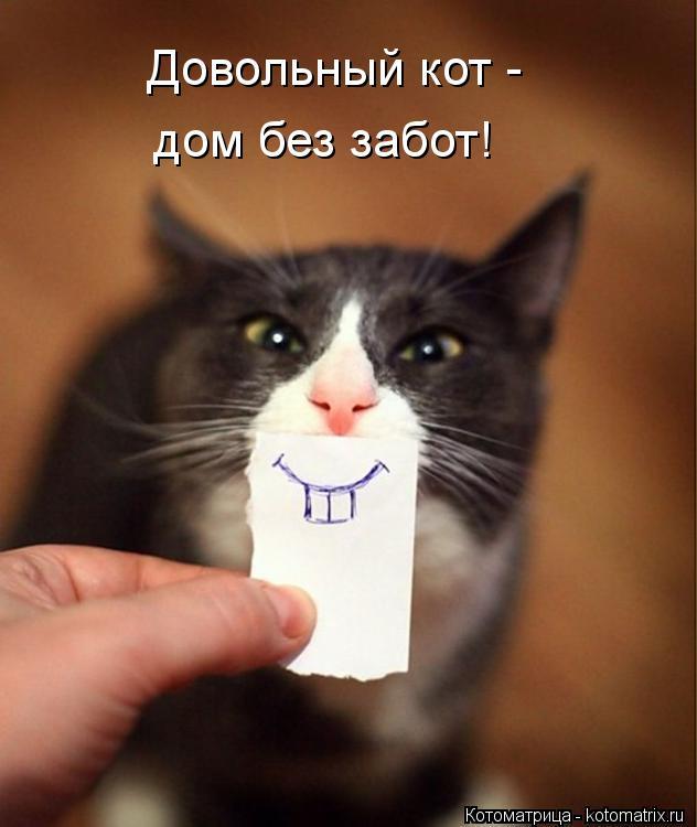 Котоматрица: Довольный кот - дом без забот!