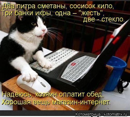 """Котоматрица: Два литра сметаны, сосисок кило, Три банки икры, одна – """"жесть"""", две - стекло. Надеюсь, хозяин оплатит обед, Хорошая вещь магазин-интернет."""