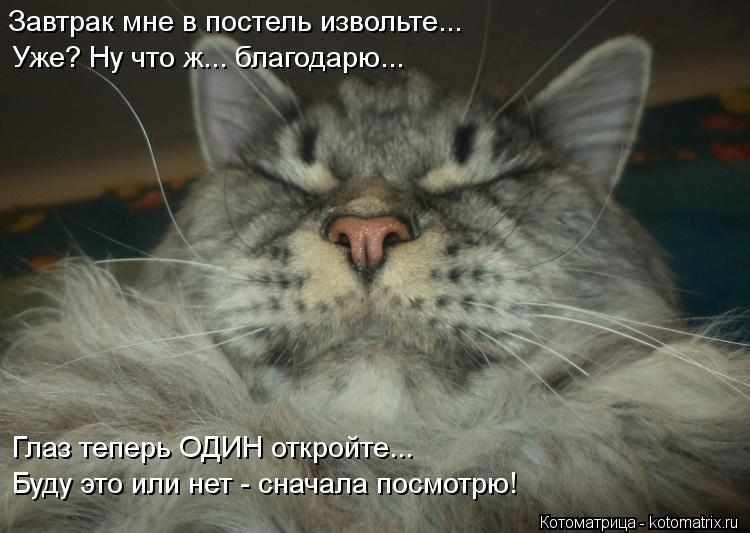 Котоматрица: Завтрак мне в постель извольте... Уже? Ну что ж... благодарю... Глаз теперь ОДИН откройте... Буду это или нет - сначала посмотрю!