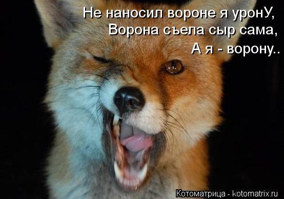 Котоматрица: Не наносил вороне я уронУ, Ворона съела сыр сама, А я - ворону..