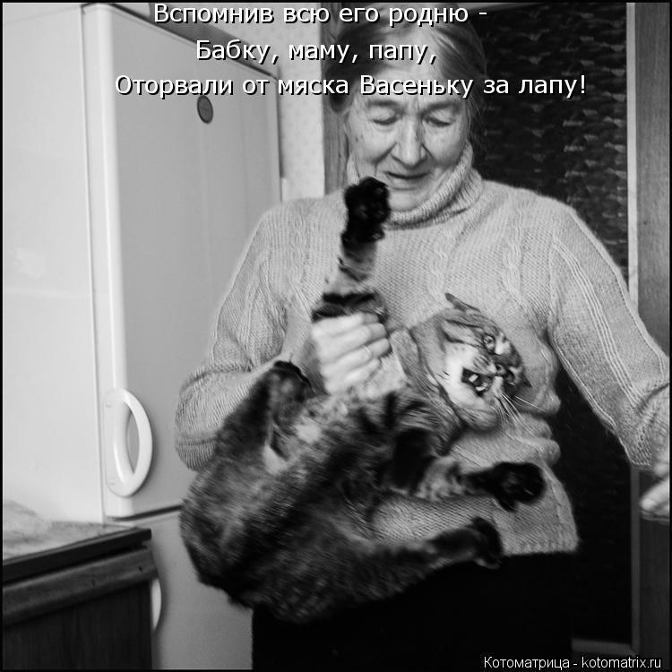 Котоматрица: Вспомнив всю его родню - Бабку, маму, папу, Оторвали от мяска Васеньку за лапу!