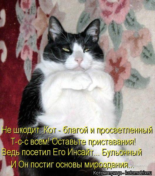 Котоматрица: Не шкодит  Кот - благой и просветленный И Он постиг основы мироздания...    Ведь посетил Его Инсайт... Бульонный           Т-с-с всем! Оставьте прист