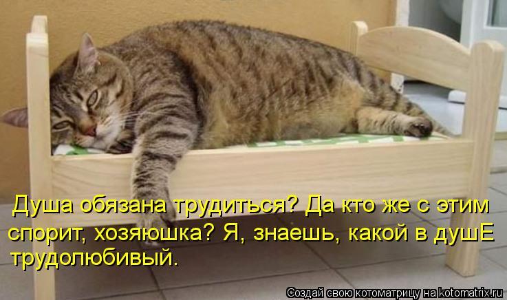 Котоматрица: Душа обязана трудиться? Да кто же с этим спорит, хозяюшка? Я, знаешь, какой в душЕ трудолюбивый.