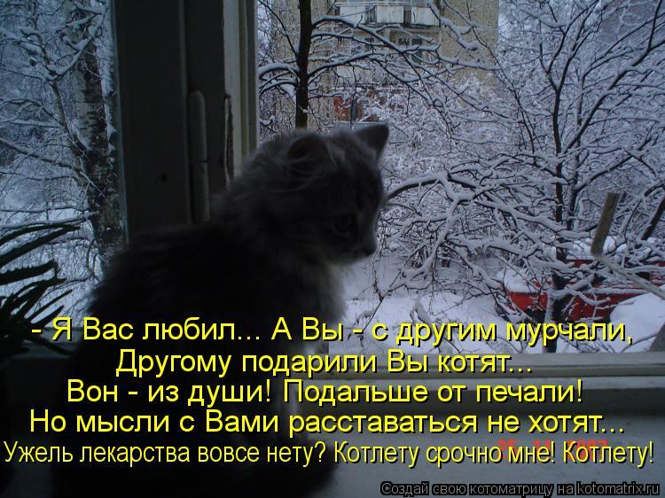 Котоматрица: - Я Вас любил... А Вы - с другим мурчали, Другому подарили Вы котят... Вон - из души! Подальше от печали! Но мысли с Вами расставаться не хотят... Уж