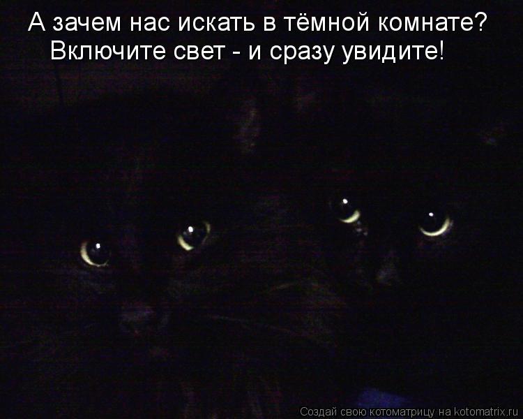 Котоматрица: А зачем нас искать в тёмной комнате? Включите свет - и сразу увидите!