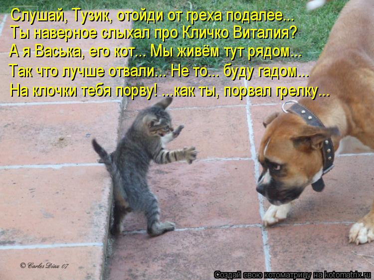 Анекдоты Про Животных Самые
