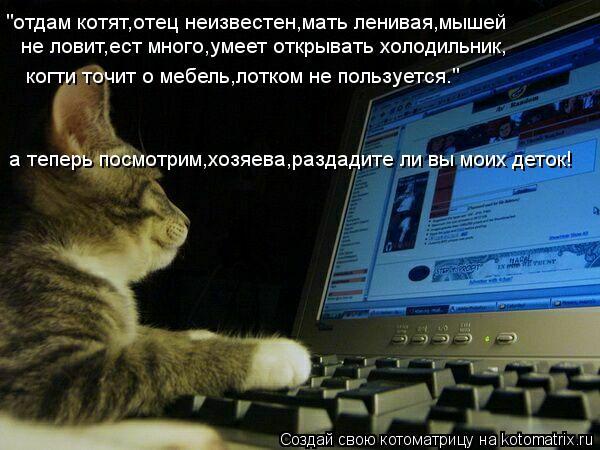 """Котоматрица: не ловит,ест много,умеет открывать холодильник, """"отдам котят,отец неизвестен,мать ленивая,мышей когти точит о мебель,лотком не пользуется."""""""