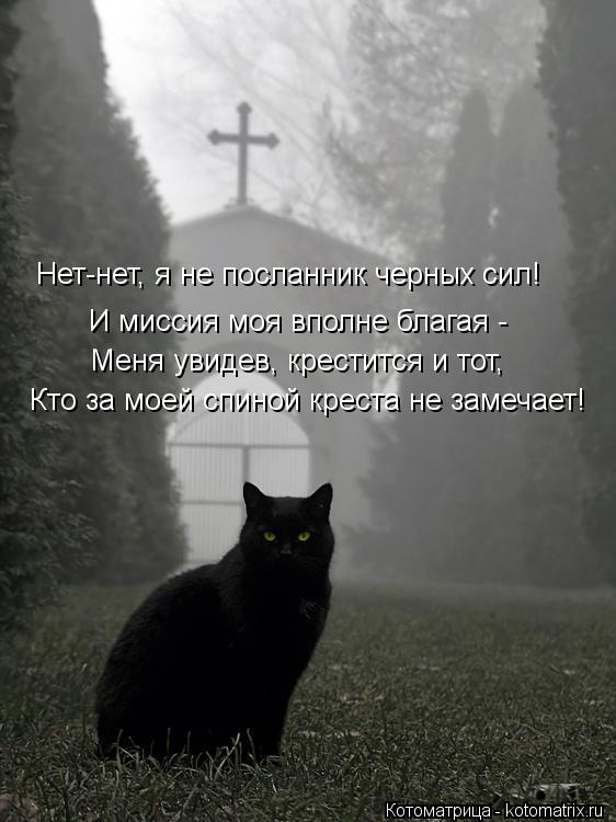 Котоматрица: И миссия моя вполне благая - Меня увидев, крестится и тот, Кто за моей спиной креста не замечает! Нет-нет, я не посланник черных сил!