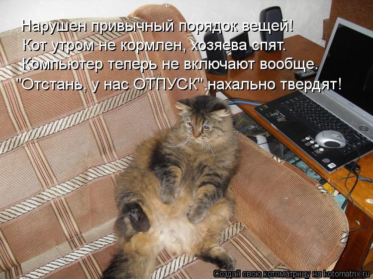 """Котоматрица: Нарушен привычный порядок вещей! Кот утром не кормлен, хозяева спят. Компьютер теперь не включают вообще. """"Отстань, у нас ОТПУСК"""" нахально тв"""