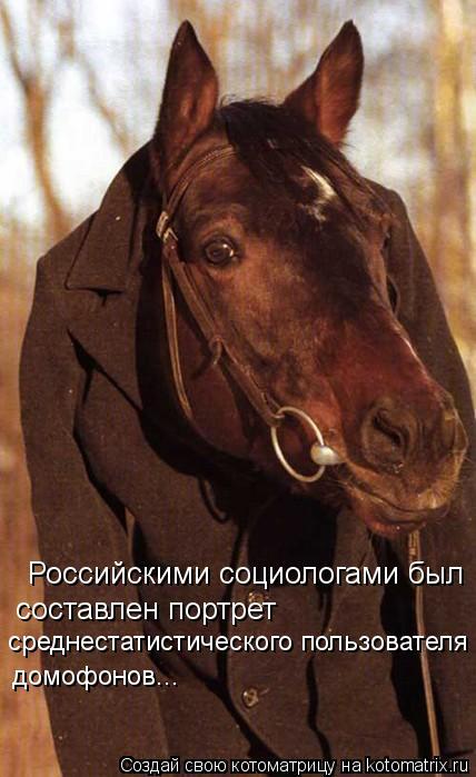 Котоматрица: Российскими социологами был  составлен портрет  среднестатистического пользователя домофонов...