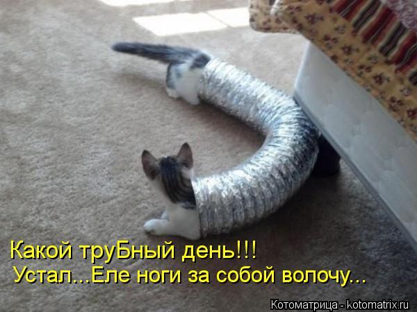 Котоматрица: Какой труБный день!!!  Устал...Еле ноги за собой волочу...