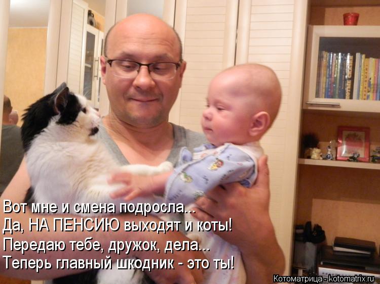 Котоматрица: Вот мне и смена подросла... Да, НА ПЕНСИЮ выходят и коты! Передаю тебе, дружок, дела... Теперь главный шкодник - это ты!