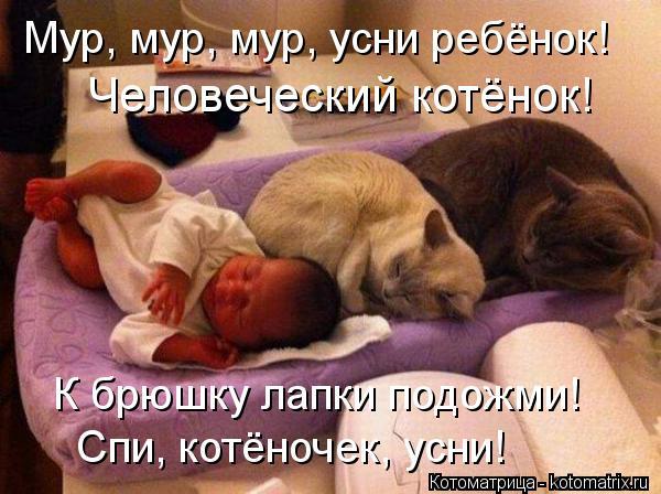 Котоматрица: Человеческий котёнок! Мур, мур, мур, усни ребёнок! К брюшку лапки подожми! Спи, котёночек, усни!