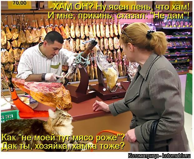 """Котоматрица: Ну ясен пень, что хам! -ХАМ ОН? И мне, прикинь, сказал: """"Не дам""""! Как """"не моей тут мясо роже""""? Дак ты, хозяйка, хамка тоже?"""