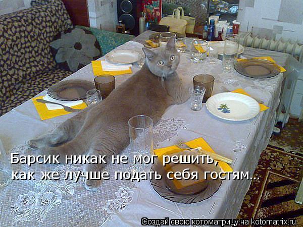 Котоматрица: Барсик никак не мог решить,  как же лучше подать себя гостям…