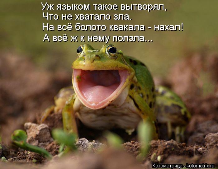 Котоматрица: Уж языком такое вытворял, Что не хватало зла. На всё болото квакала - нахал! А всё ж к нему ползла...