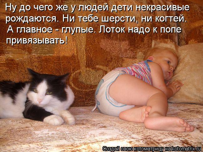 Котоматрица: Ну до чего же у людей дети некрасивые рождаются. Ни тебе шерсти, ни когтей. А главное - глупые. Лоток надо к попе  привязывать!