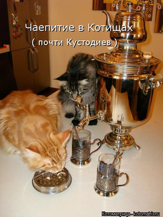 Котоматрица: Чаепитие в Котищах ( почти Кустодиев )